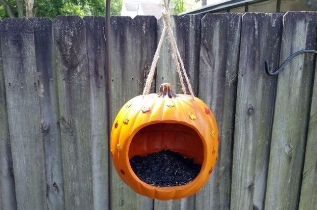 pumpkin-bird-feeder