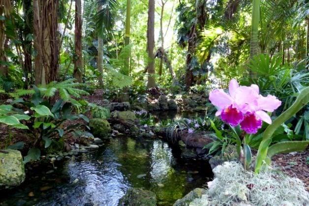 A Visit to Fairchild Tropical Botanic Garden | Florida ...