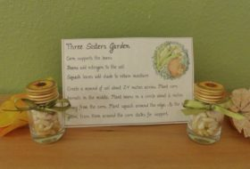 Three Sisters Garden Thanksgiving Craft