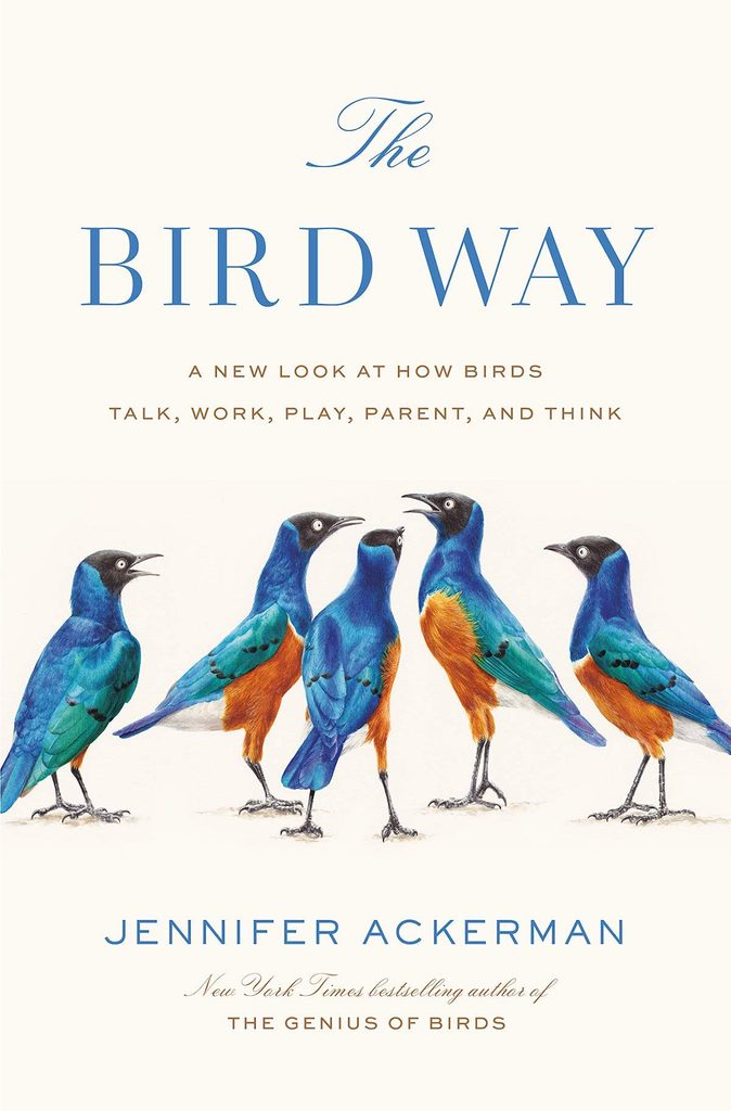 The Bird Way book