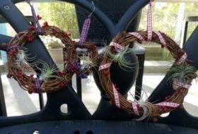 Tillandsia Wreaths for Christmas