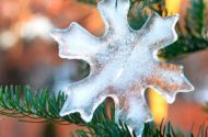 Michelle Lepak, blogger at dandelionpatina.com, shares how to make ornaments from ice.