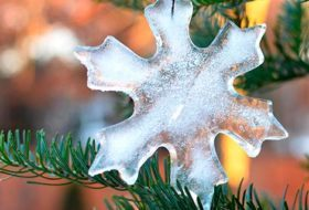 Easy-to-Make Ice Ornaments