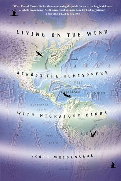 Best Books about Birds