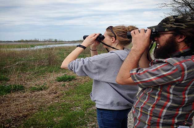 Keep your binoculars at the ready when you're trying to spot a rare bird!
