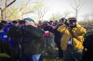 Festivalgoers at Biggest Week raise their binoculars to catch a glimpse of a warbler.