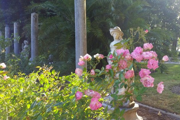 Mable Ringling's Rose Garden