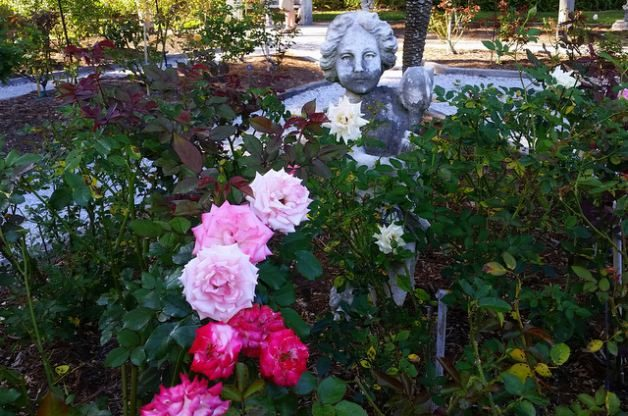 Mable Ringling's Rose Garden