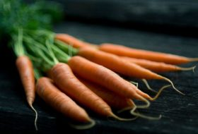 From Carrots to Cucumbers: Your Guide to 7 Veggie-Harvest Times