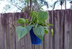 Simple Hanging Planter Craft