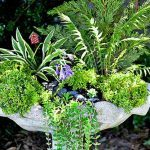 Turn a Birdbath Into a Planter for a Mini Fairy Garden
