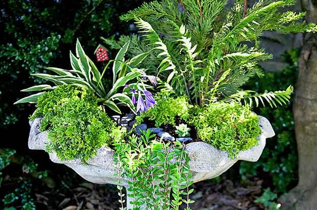 Merveilleux If You Have An Old Birdbath Thatu0027s Had Its Day, Give It New Life As A  Miniature Garden. But Before You Begin, Think About What Kinds Of Plants  You Want To ...