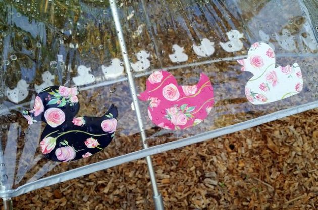 Rubber Duckie Umbrella Craft