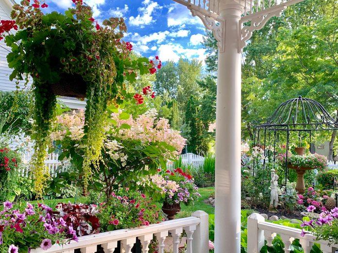 backyard garden tips