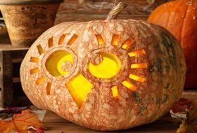 Carve an Owl Jack-o-Lantern for Halloween