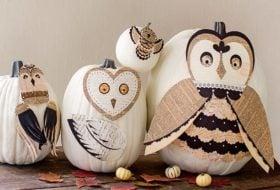How to Make a Super Cute, No-Carve Owl Pumpkin