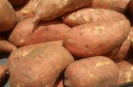 Sweet Potato Facts