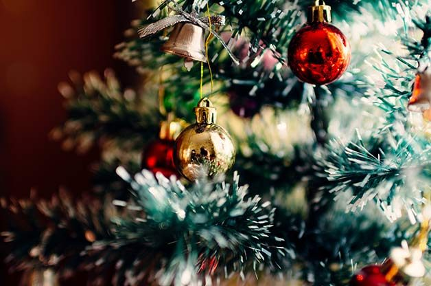 Theyu0027re A Holiday Staple, But You Probably Didnu0027t Know These Fun Facts  About Christmas Trees.