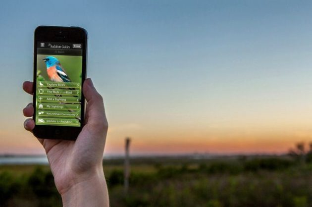 Birding Apps Audubon Bird Guide image
