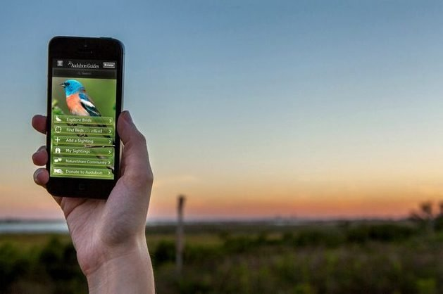 Birding Apps Audubon Bird Guide image