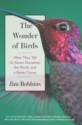 Books About Birds Wonder of Birds