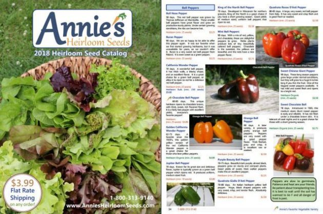 Seed Catalogs Annies