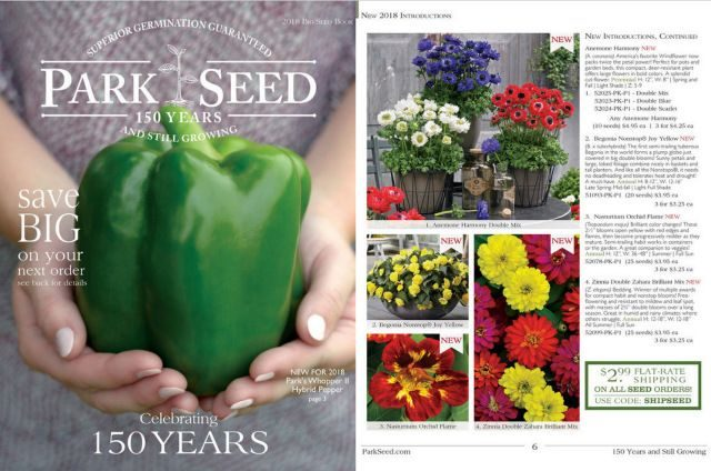 Seed Catalogs Park Seed