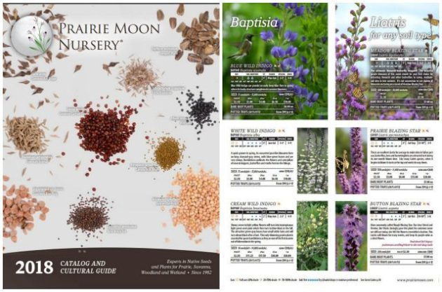 10 Seed Catalogs Every Gardener Needs Flower And Vegetable Catalogs