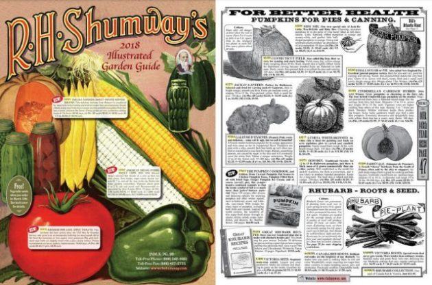 Seed Catalogs Shumway