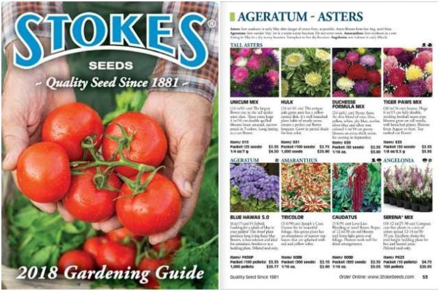 Seed Catalogs Stokes Seeds