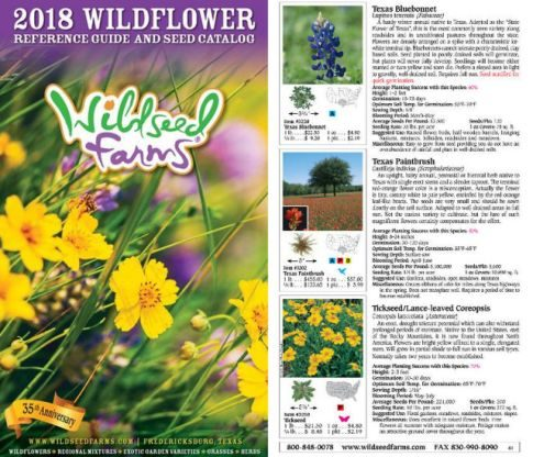 Seed Catalogs Wildseed