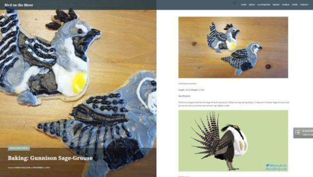 BotM Gunnison Grouse Bird Cookies