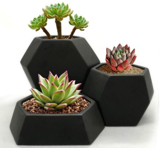 Mini Planters Geometric Trio