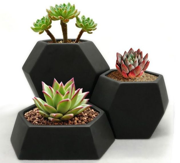 Mini Planters Geometric Trio