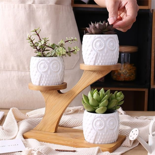 Mini Planters Owls Amazon