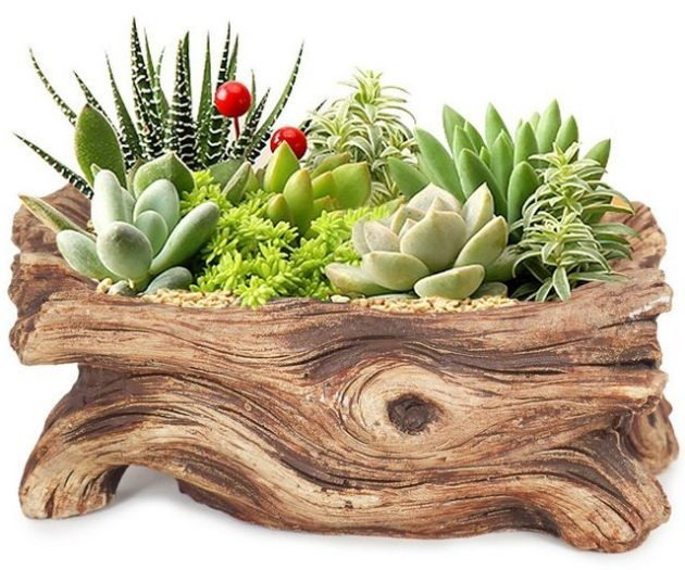 Mini Planters Wood Log
