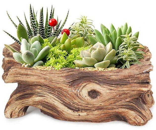 Mini Planters Wood Log
