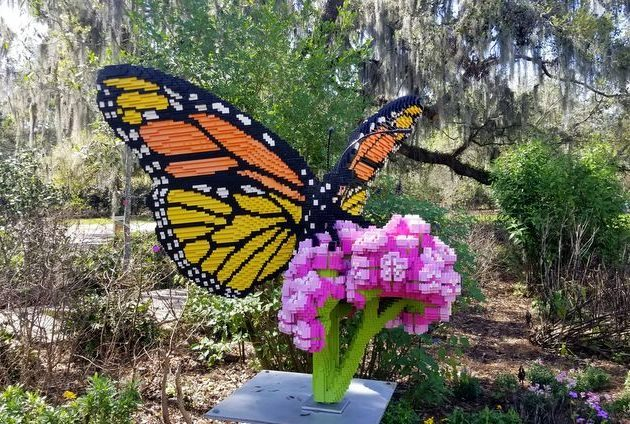 Nature Connects Monarch