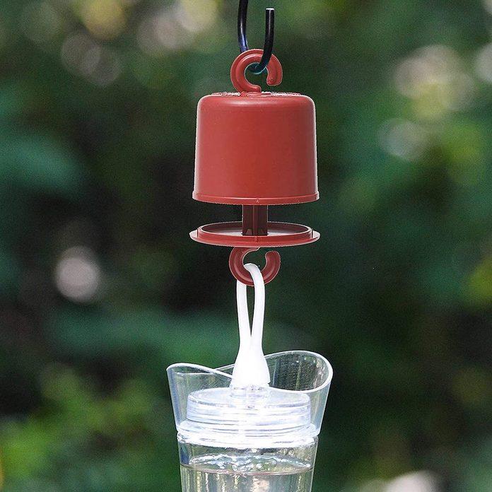Hummingbird feeder ant guard