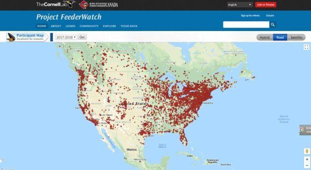 Backyard Citizen Science Feederwatch
