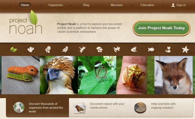 Backyard Citizen Science Project Noah