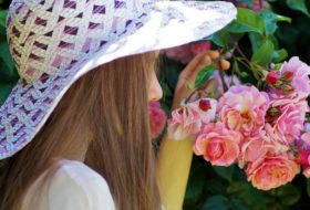 18 Fragrant Roses to Perfume Your Garden