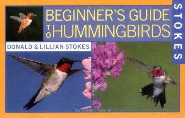 Hummingbird Gifts Beginner's Guide