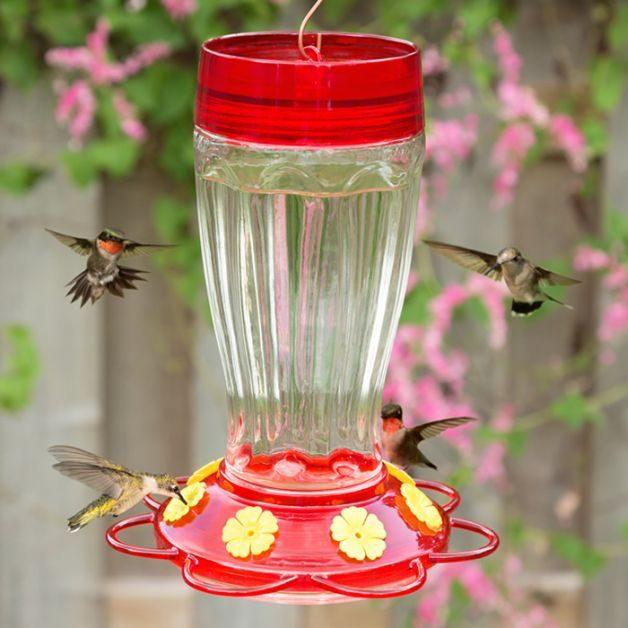 Hummingbird Gifts Big Gulp Feeder