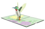 Hummingbird Gifts Card