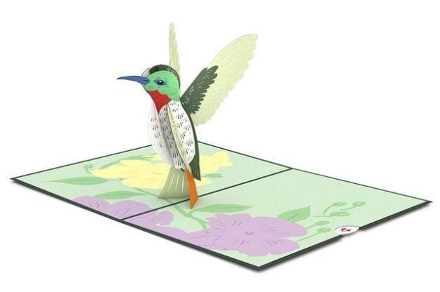 Hummingbird Gifts Card