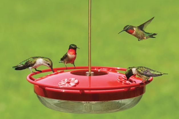 Hummingbird Gifts HummZinger Feeder