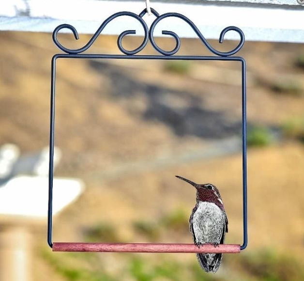 Hummingbird Gifts Swing