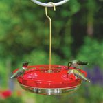18 Hummingbird Feeders and Accessories Your Birds Will Love