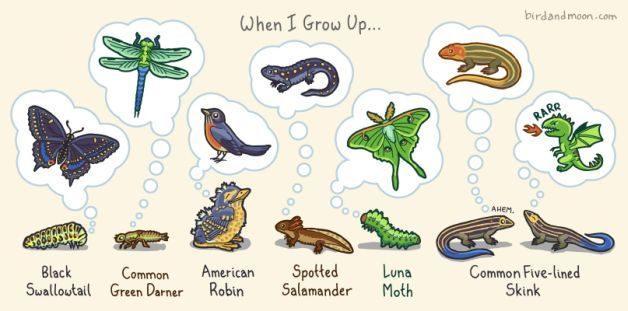 Rosemary Mosco nature art When I Grow Up